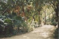 12c - Seville Parks
