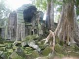 Angkor Ruin