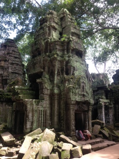 Angkor Wat Jungle