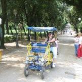 Parks & Piazas 016
