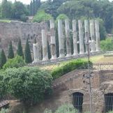 Roman 024