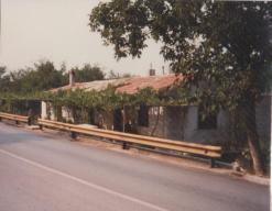 Yugoslavia (11)