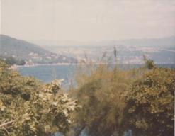 Yugoslavia (16)