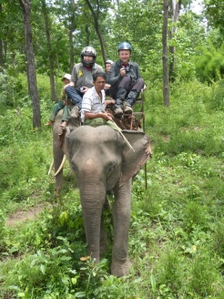 Elephant Trek - Yok Don - Vietnam 8
