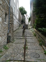 Angers 025