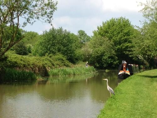 Canal Long Walk (7)