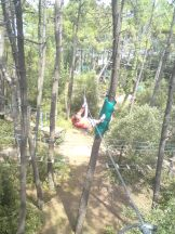Feeling Forest 004