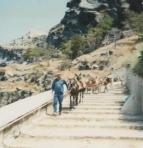 Honeymoon (13d) - Santorini