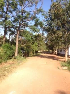 Approaching a School