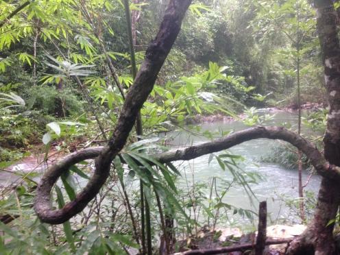 River in full flow