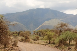 Ngorogoro approaches
