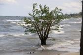 Lakeside at St Dominic Annex Beach