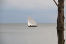 Dhow on Victoria