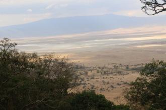 Day 2 Ngorogoro (457)