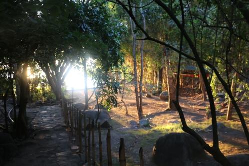 Wag Hill Dawn 2