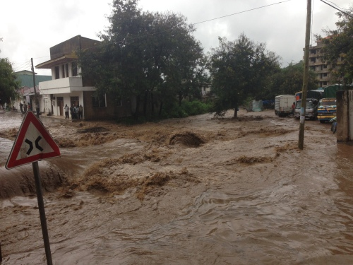 In Flood