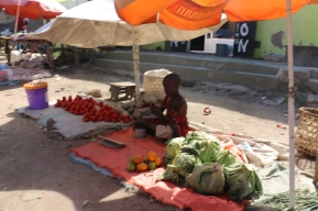 Cabbages, Mangoes and Tomatoes