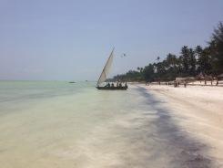 Zanzibar (1)