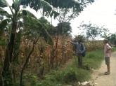 Visit Village (131)