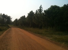 the road to our where our hosts live.