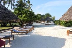Zanzibar (80)