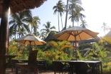 Zanzibar (89)