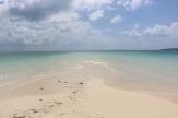 Zanzibar (1000)