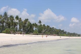 Zanzibar (207)