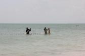 Zanzibar (608)-540