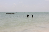 Zanzibar (609)-541