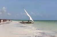 Zanzibar (610)-542