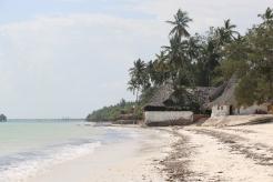 Zanzibar (612)-544