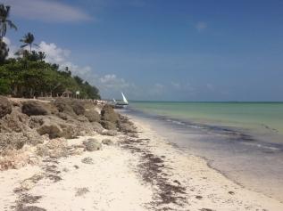 Zanzibar (614)-546