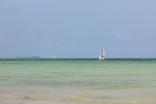 Zanzibar (622)-554