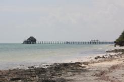 Zanzibar (628)-560