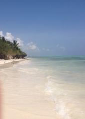 Zanzibar (761)-693
