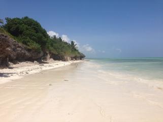 Zanzibar (762)-694