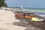 Zanzibar (790)-723