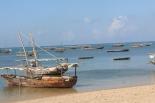 Zanzibar (959)