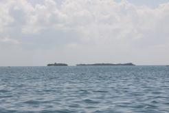 Zanzibar (978)