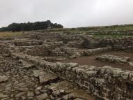 Hadrian's Wall (56)