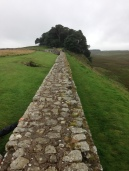 Hadrian's Wall (72)