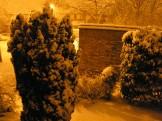 Orange Snow 005
