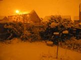 Orange Snow 007