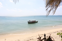 Zanzibar (2427)