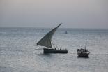 Zanzibar (2501)