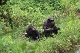 10 Entebbe Zoo (289)