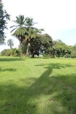 10b Entebbe Gardens (108)