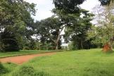 10b Entebbe Gardens (5)