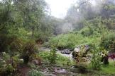 07b Sipi Falls (205)